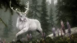 Horns Stag Belief Celtic White Deer Animals Photo