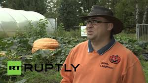 Largest Pumpkin Ever Weight by Germany