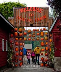 Snohomish Pumpkin Patch Zombie by Christmas Tree Farms Snohomish County Christmas Lights Decoration