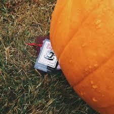Closest Pumpkin Patch To Marietta Ga by Daily Grind Home Facebook