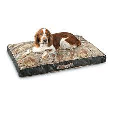 Petco Dog Beds by Restoration Hardware Dog Bed Beds Decoration