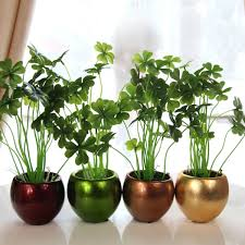 Stylish Inspiration House Plant Pots Unique Design Containers