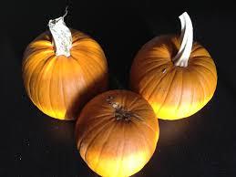 Varieties Of Pie Pumpkins by Fresh Pumpkin Pie