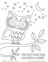 Kindergarten Coloring Worksheets Nighttime Owl Page