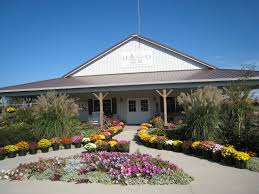 The Great Pumpkin Patch Arthur Il by The Homestead Bakery Enjoy Illinois