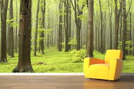 Wall Mural Decals Nature by 17 Creative Exterior And Interior Wall Murals Wall Murals Tree