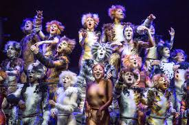 cats on broadway cats on broadway a return to the jellicle my theatre my