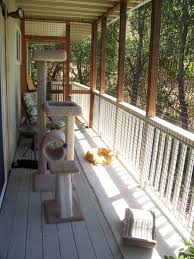 cats on deck best 25 outdoor cat run ideas on outdoor cat
