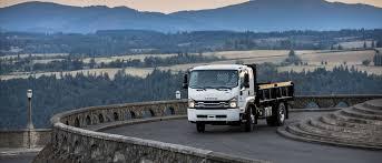 100 Truck Roadside Assistance Get Help For Isuzu S 866 4419638