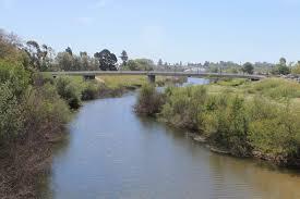 Santa Cruz Christmas Tree Farms by Soquel Avenue Bridge And Flooding On The San Lorenzo River Santa