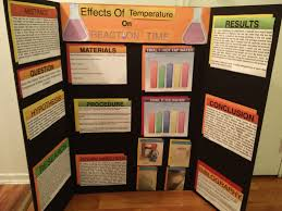 Lava Lamp Science Project Results by Cheap Personal Statement Editing Sites For Masters Essay Against