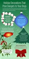 Are Christmas Trees Poisonous To Dogs by Holiday Dog Safety U2022 Travis County Kennel Club
