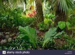 USA Florida Indian River County Vero Beach McKee Botanical