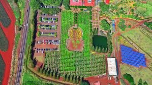 9 of the World s Coolest Mazes You Can Visit