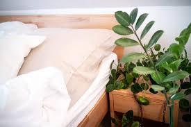 wir lieben greenery warum zimmerpflanzen perfekt ins