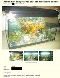 bon coin aquarium occasion bon coin aquarium occasion 28 images table basse aquarium bon
