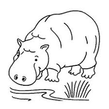 Jungle Animal Hippopotamus Gorilla Trekking Coloring Pages