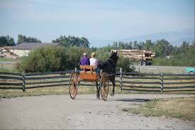 Lucie | Fraser School Of Driving Meadows Equestrian Center On Equinenow 96 Best Vet Books Images Pinterest Horses The Horse And A5f1895b8566a63e9b0f3f2269a3cfaae57a8ajpg Dressage In Faraway Places Today Full Clinic Anchorage Ak Chester Valley Veterinary Hospital Blog Archives Mountain Homes 4 Horse Country 2 2014 Digital By Linda Hazelwood Issuu Nottingham Equine Colic Project 25 Cozy Bed Barns Horserider Western Traing Howto Advice Best Ranch Vacations Of The West American Cowboy