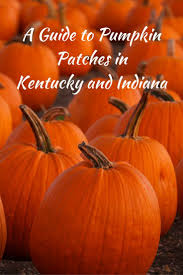 Pumpkin Patch Near Lincoln Al by 9 Best Blue Smoke Baskets For All Occasions Images On Pinterest