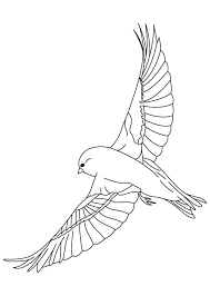 Finches Flying Coloring Page