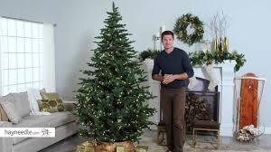 Hobby Lobby Pre Lit Led Christmas Trees by Belham Living 7 5 Ft Natural Evergreen Clear Pre Lit Full