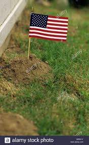Mole Hill In Backyard With The Mole Hill Having An American Flag ... How To Get Rid Of Moles Organic Gardening Blog Cat Captures Mole In My Neighbors Backyard Youtube Animal Wikipedia Identify And In The Garden Or Yard Daily Home Renovation Tips Vs The Part 1 Damaging Our Lawn When Are Most Active Dec 2017 Uerstanding Their Behavior Mole Gassing Pests Get Correct Remedy Liftyles Sonic Molechaser Alinum Covers 11250 Sq Ft Model 7900