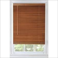 Lowes Window Treatments Vinyl Mini Blinds At Vertical Blind Slats