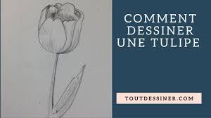 Coloriage Tulipe Maternelle