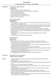 Download Truck Driver Resume Sample As Image File