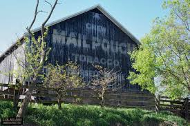 Ghost Sign Harvest #7 – Pennsylvania, More Barns, And An Owl ... Pine Board Batten Garages Rustic Horizon Structures 10 Best Country Roads Fences And Barns Images On Pinterest Old 4 Horse Barn Just Forum The Beauty Of Linda Straub Scene Through My Eyes Apple Trees May Sale Get A Graceland Portable Bldg Delivered For Just 99 Pretty Red Barn A Cultivated Nest Bypass Style Closet Doors Httpsourceablcom Home Ideas Homes With That Are Living Quarters Kits Project North Western Images Photos By Andy Porter 9jpg Ghost Sign Harvest 7 Pennsylvania More An Owl