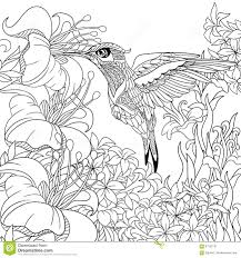 Download Coloring Pages Hummingbird Page With Zentangle Flying Bird For Adult