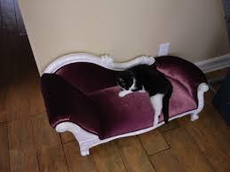 luxury designer cat beds couches