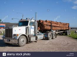 Logging Truck Usa Stock Photos & Logging Truck Usa Stock Images - Alamy Logging Trucks For Sale On Cmialucktradercom Peterbilt Long Log Truck Custom Toys And 388 Log Truck For Farming Simulator 2015 Used 2004 Peterbilt 379 Ext Hood For Sale 1951 1984 Tractor National Museum Of American History 281 Wikipedia Truck Trailer Transport Express Freight Logistic Diesel Mack New 2018 367 Near Edmton Ab 2005 378 Tract Auctions Online Proxibid 1992 Western Star 4964f 938357 Miles 2014 389 Icon Of The Highway Photo Image Gallery Trucking Spotlight Expresstrucktax Blog