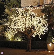 Illuminated Decorative LED Tree For An Outdoor Wedding