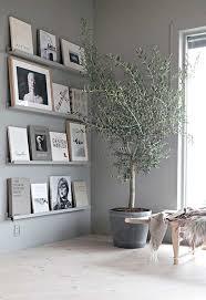 eine ästhetische ergänzung ihres interieurs der olivenbaum