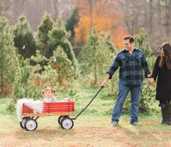 Fraser Christmas Tree Cutting by How To Survive A Holiday Family Photo Shoot Our Trip To The