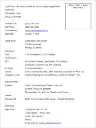 Excel Resume Format