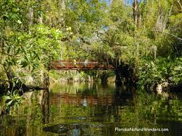 A paddler s paradise awaits at Shingle Creek Here a new