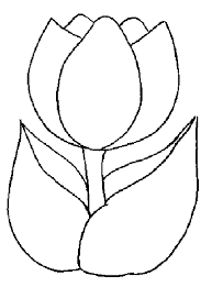Tulip Template Printable
