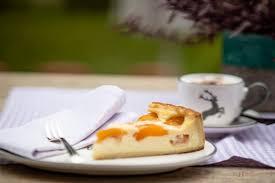 rezept aprikosen schmand kuchen