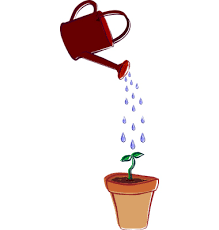 watering with watering can Google Search