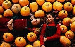 Closest Pumpkin Patch To Marietta Ga by Berry Patch Farms Georgia Pumpkins