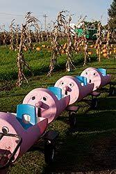 Canby Pumpkin Patch Train by Halloween Events Happening In Clackamas And Washington Counties