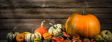 Pumpkin Patch Collins Ms by Halloween 2017 Trick Or Treat Times In Pine Belt Ms
