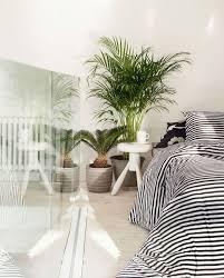 tasaraita bettwäsche set schlafzimmer pflanzen gestreifte