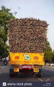 A Truck Loaded With Sugar Cane Being Delivered To The Market Stock ... Resale Value Of Natural Gas Trucks Heavy Hitters Making Big Bets On Used Traffic Tamil Nadu India Truck Stock Video Footage Nada Prices Review New And Values Dotd 09 Freightliner C120 72 Condo W 666k Miles Nada Price Book Best Resource Commercial Online And Bharatbenz Widens Reach In With New Tuticorin Dealership