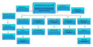Staff Organization Chart For Assisted Living vs Home Care