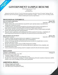 Government Employee Resume 10