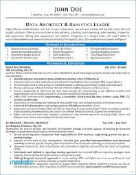 Software Architect Resume Examples Sample