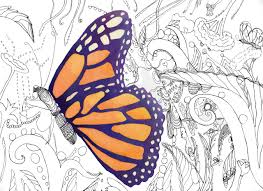 Butterfly Coloring Book By Catherineholcombe